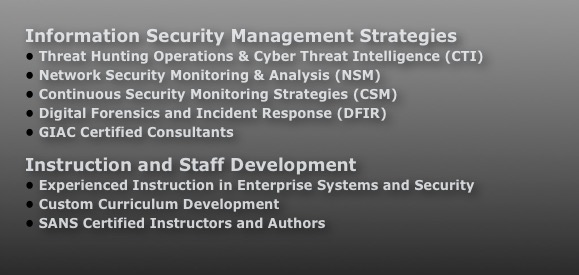 Information Security Management Strategies